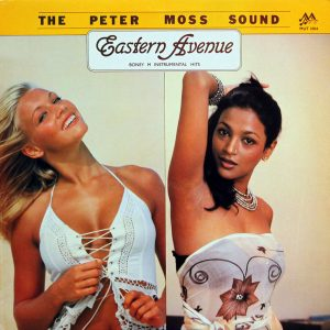 The Peter Moss Sound - Eastern Avenue