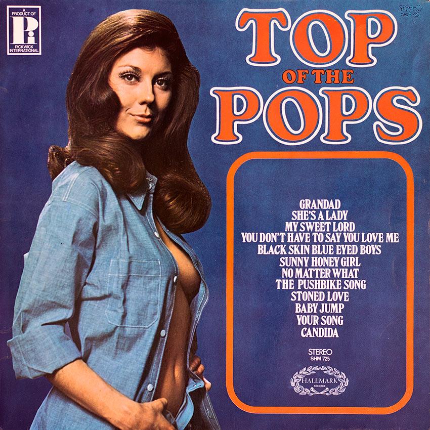 Top of the Pops Vol. 15