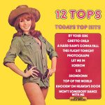 12 Tops - Today's Top Hits Vol. 16 - beautiful record covers at Cover Heaven