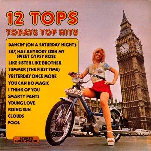 12 Tops - Today's Top Hits Vol. 14