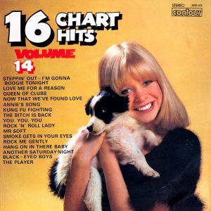 16 Chart Hits Vol. 14